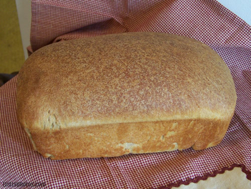 Freshly Milled Whole Wheat Loaf Bread! YUM!